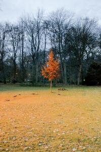 hasta convertirse en un árbol de bronce que brilla con luz propia, adueñándose del protagonismo de todo el cuadro
