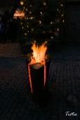 ¿Y si hubiese seres de fuego viviendo dentro de los troncos?